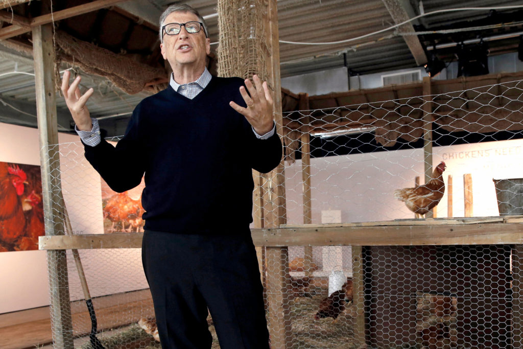 Bill Gates a csirkék között kép bejegyzésbe.